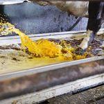 养殖场浸脚消毒池 / 不锈钢
