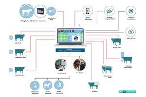 牛用监控系统