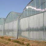 温室薄膜 / LDPE / 冷却效应 / 多层