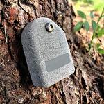 树木位移传感器