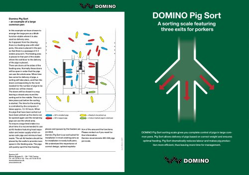 Domino Pig Sort