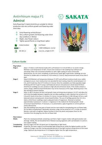 ADMIRAL Antirrhinum majus F1
